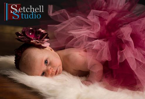 Baby ballet Photography IL Illinois